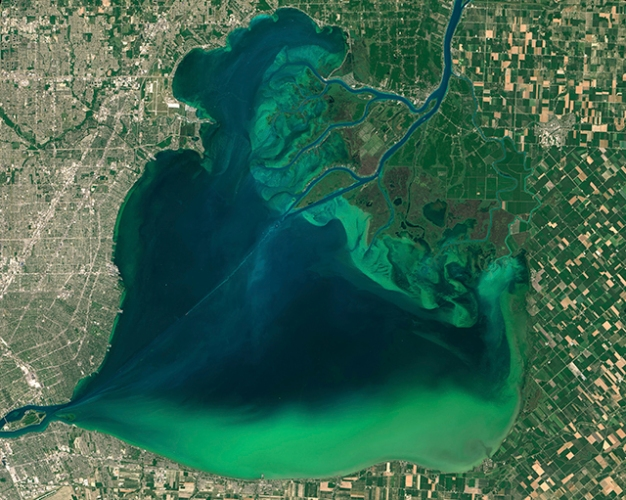 photo of algal bloom on lake st. clair