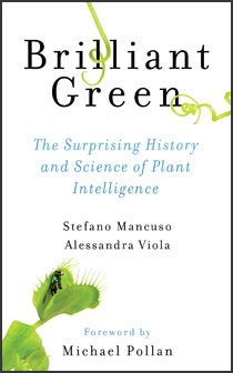image of book cover for brilliant green