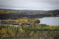photo of former mine pit grown with woods