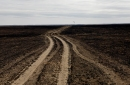 photo of burned grassland