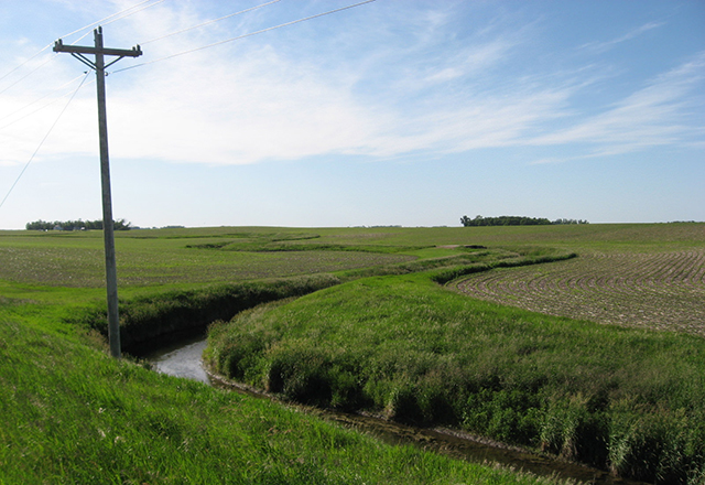 Research shows that buffers helps to filter phosphorus and other chemicals that run off of fields and into the water.