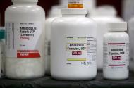 Amoxicillin penicillin antibiotics
