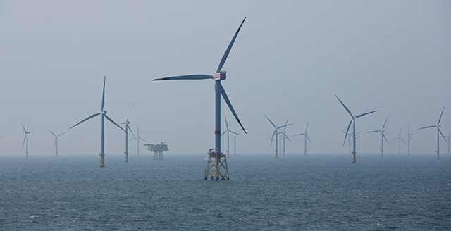photo of wind turbines in the sea