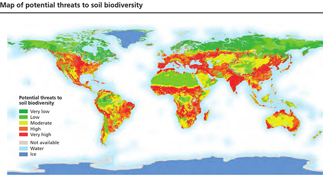 map showing changes in soil biodiversity