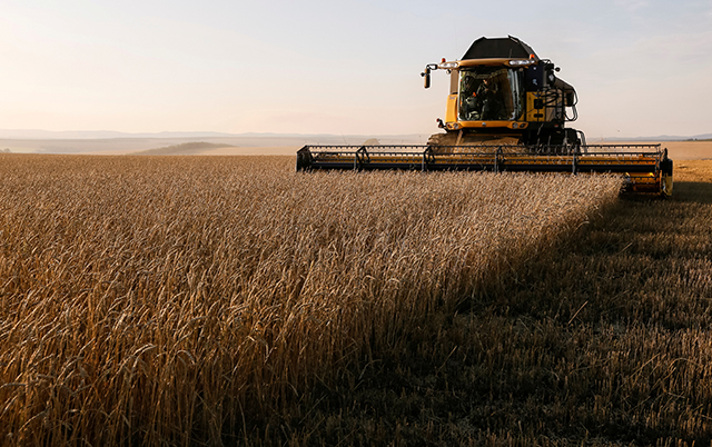 photo of wheat field being harvested