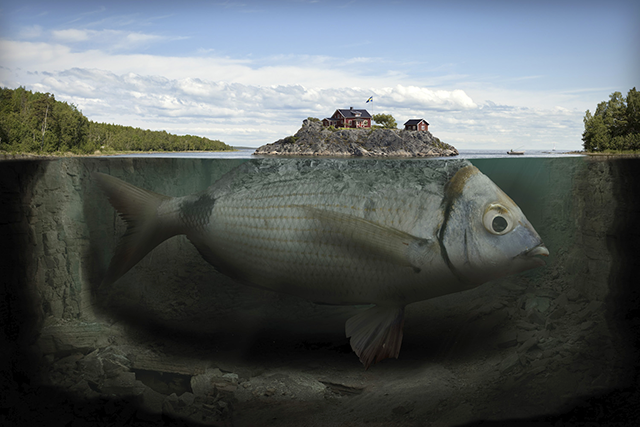 "What will T2P2 do with Erik Johansson's ""Fishy Island""?"