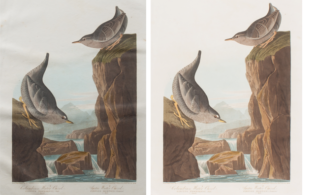 Ouzel print before restoration, left, and after.