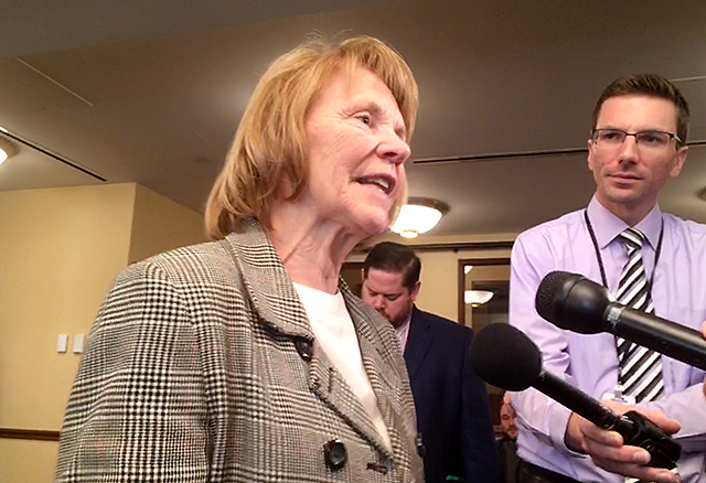 Senate State Government and Elections Committee Chair Mary Kiffmeyer