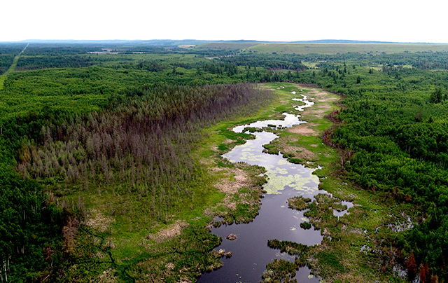 A river runs near a proposed tailings basin for PolyMet's mine copper-nickel mine operation.