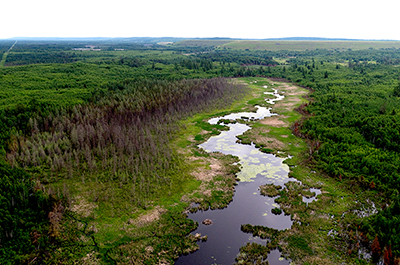 proposed tailings basin for PolyMet's mine copper-nickel mine operation