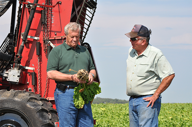 Rep. Collin Peterson with sugar beet