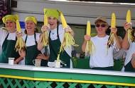 corn cob vendors