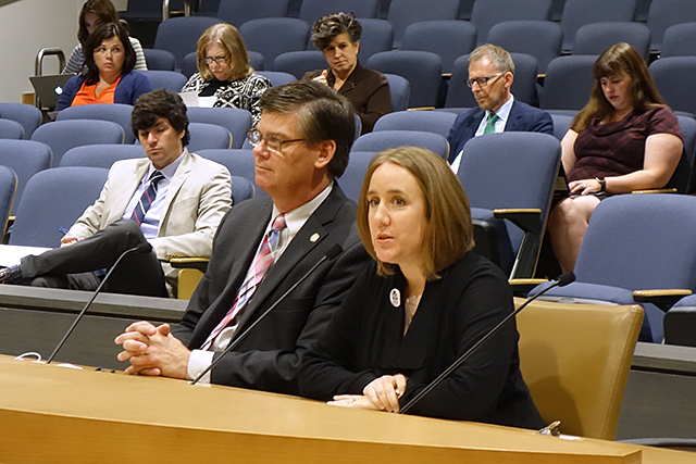 Lija Greenseid, insulin advocate, testifying at the Senate Health and Human Services Finance and Policy Committee.