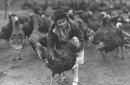 historical photo of woman with turkeys