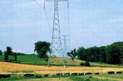 photo of powerlines across farm field
