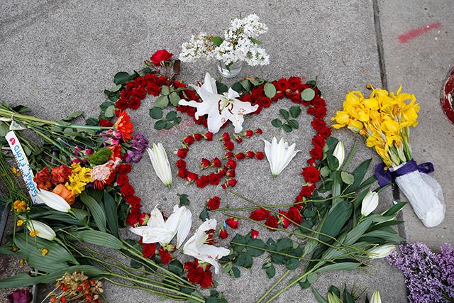 photo of flowers on sidewalk