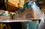 USDA SNAP food