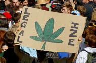 pro-marijuana sign