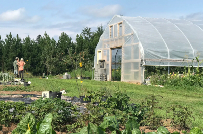 photo of high tunnel greenhouse