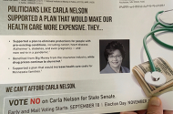 Everytown for Gun Safety mailer about state Sen. Carla Nelson.