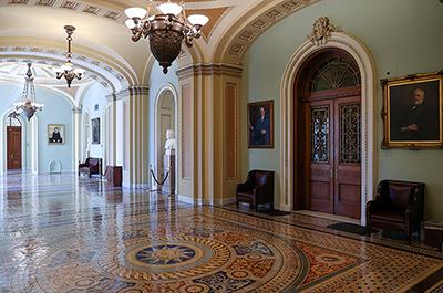 The doors to the U.S. Senate floor
