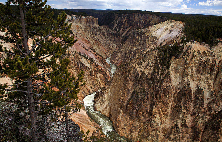 The Grand Canyon of the Yellowstone River in Yellowstone National Park, Wyoming.