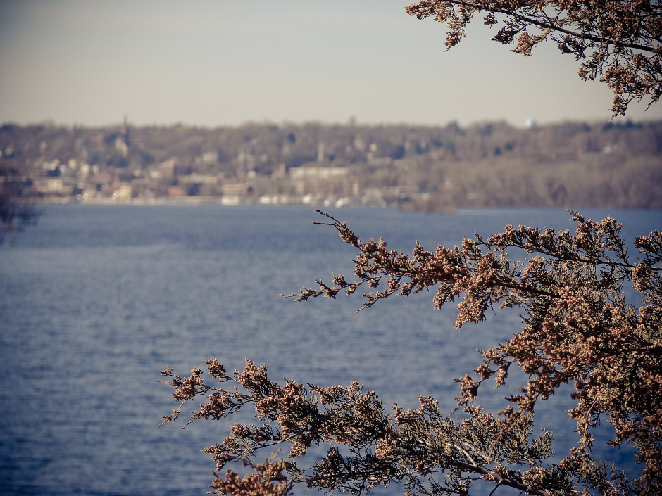 photo of stillwater across the st. croix