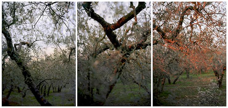 "JoAnn Verburg's ""THREE TO ONE (for Joel Shapiro),"" from 2020, three pigment prints each mounted to Dibond"