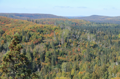 photo of landscape in superior national forest showing trees and hills