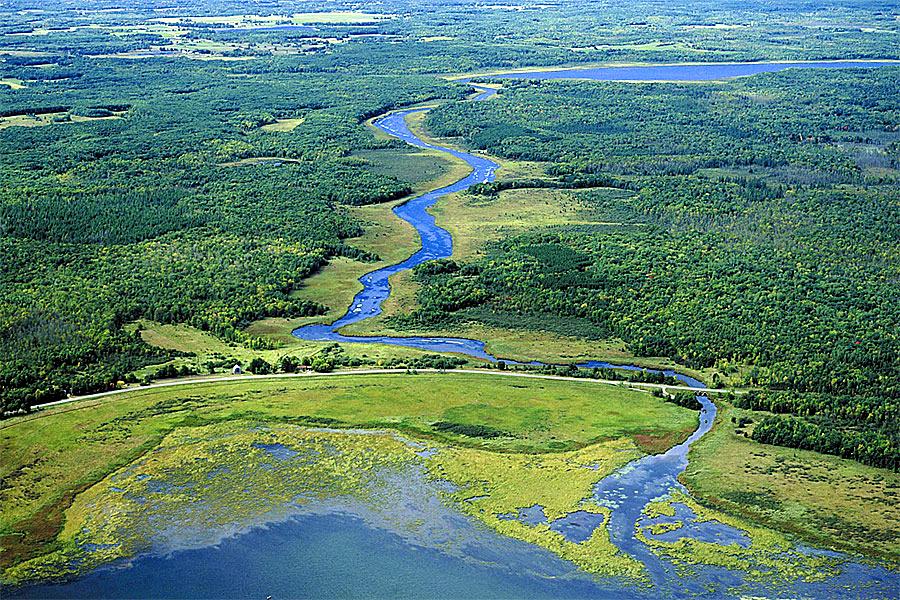 An image of Mille Lacs Kathio State Park near Onamia.