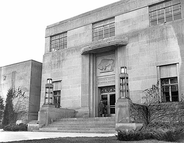 The James Ford Bell Museum of Natural History in 1942.