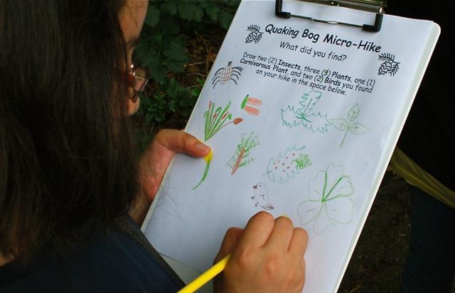 Quaking Bog micro-hike