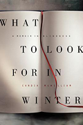 """""""What to Look for in Winter,"""" by Candia McWilliam"""