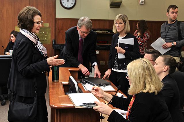 State Rep. JoAnn Ward, DFL-Woodbury, speaking with Perpich leadership