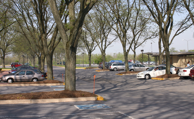 Lancaster parking lot