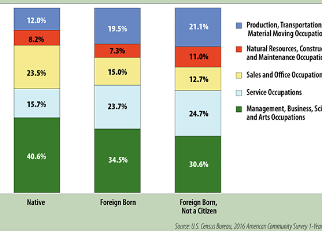 Occupation of employment for Minnesota workers by place of birth and citizenship