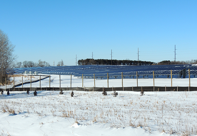 A solar garden near the city of Shafer.