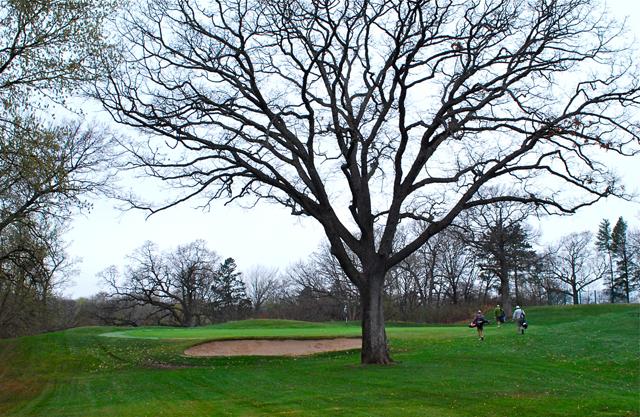 Keller Golf Course, St. Paul