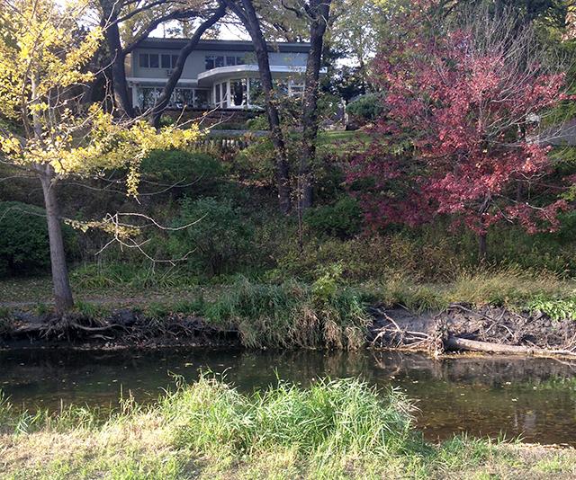 The creek crosses under the Cedar Lake Trail