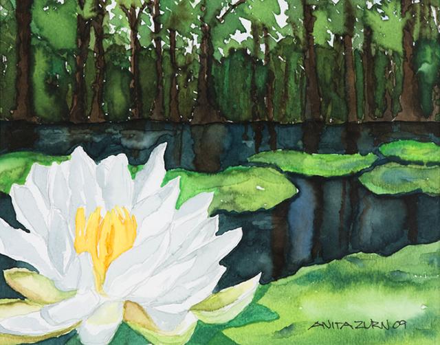 """""""White Surprise,"""" by Anita Zurn"""
