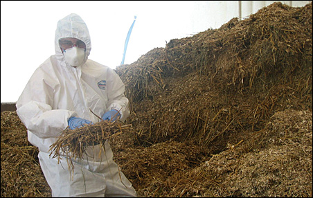George Johnson, an environmental scientist, collects manure samples at the State Fair for an energy project analysis.