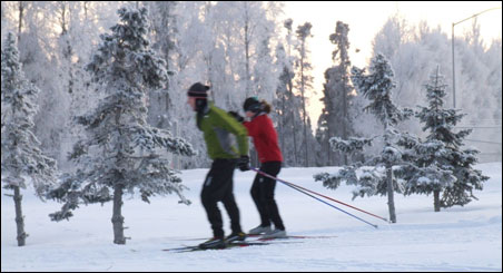 With little snow so far this winter, regional parks are not seeing the volume of cross-country skiers they had prepared for.