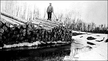 A logging operation near Baudette, Minn., circa 1900.