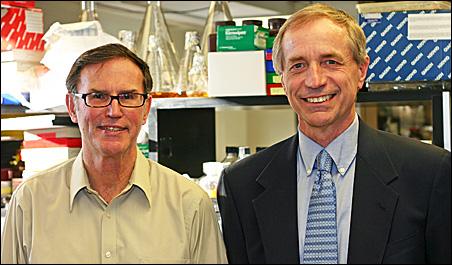 Ashley Haase, M.D., left, and Pat Schlievert, Ph.D.