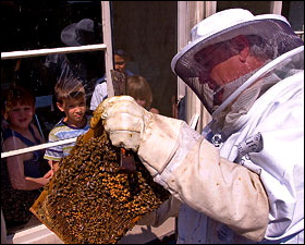 Beekeeper Kevin Williams