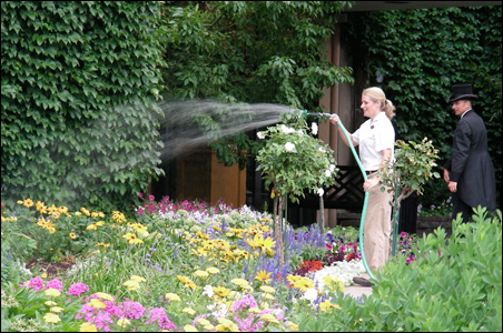 A gardener tends to flowers near the entrance of the St. Paul Hotel.