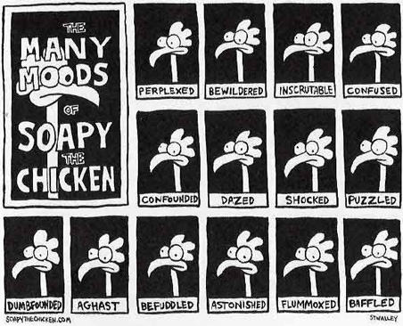 Steve Stwalley's Soapy the Chicken