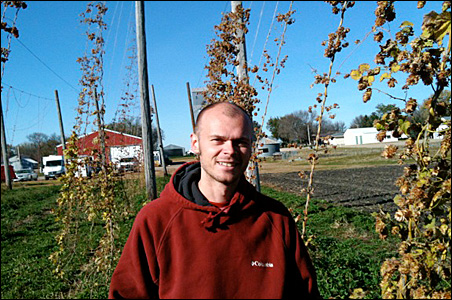 The hop vines are done for the season at the Brau Brothers brewery in Lucan, Minn. On a recent weekday, Dustin Brau, CEO, supervised the removal of this year's vines in the field in front of the red brewery building.