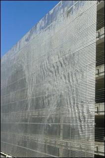 Wind Veil