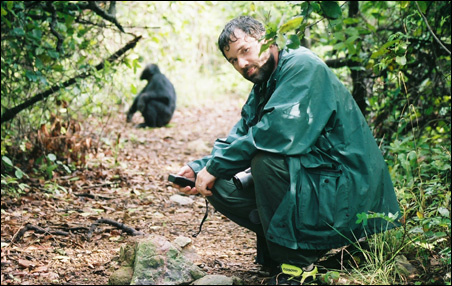 Prof. Michael L. Wilson observes a chimpanzeein Gombe National Park.
